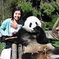 4q-臥龍熊貓-和大仔照相-和大隻照相100人民幣.jpg