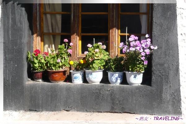 大昭寺-3樓-恬靜的窗台小花園.jpg