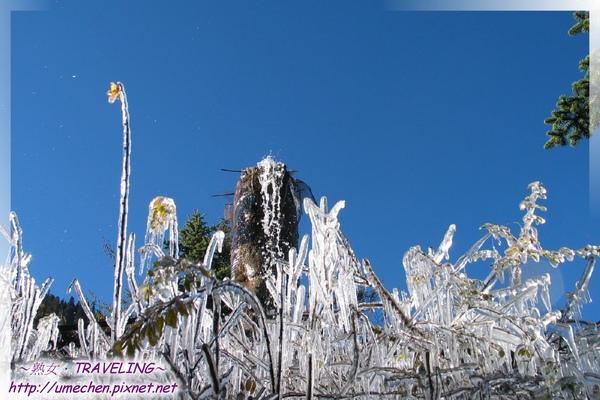 離開雅江-路旁的輸水管和結冰的草.jpg