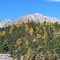 前往亞丁-多變而豐富的山體和植被(1).jpg