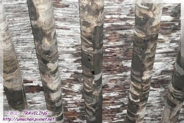 札什倫布寺-5-9世班禪靈塔祈殿-中庭走廊上方的木條天花板,形成特異圖形.jpg