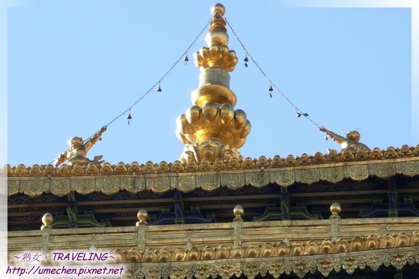 札什倫布寺-講經場-仰望十世班禪靈塔祈殿的金頂.jpg