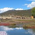 桑堆鎮-三天前曾造訪的小小紅草灘.jpg