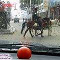理塘-下冰雹,在車內擺顆蕃茄作對比.jpg