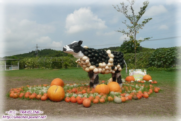 牛奶故鄉-南瓜乳牛(1.jpg