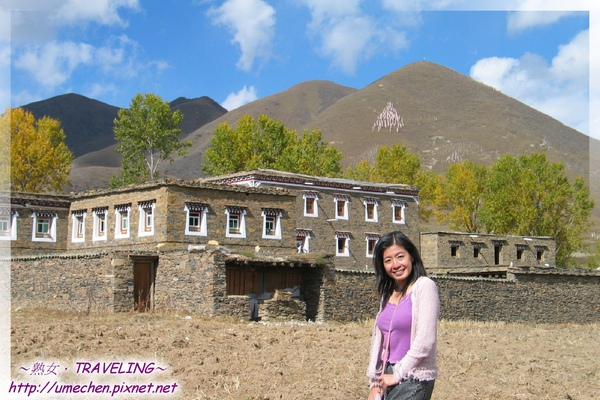 新都橋-藏式民房和祈福的山.jpg