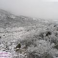 折多山-冰雪的異想世界(1)沒想到剛下雪的景色是這麼漂亮.jpg