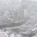 木格措-正飄雪的銀白(9).jpg