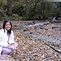 海螺溝三號營地-森林裏的小小溪與落葉.jpg