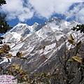 一號冰川-觀景台(6)二號冰川的雪山.jpg