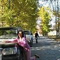前往新都橋-我們的吉普車隊.jpg