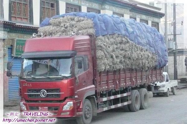 薩嘎-載滿羊毛的貨車.jpg