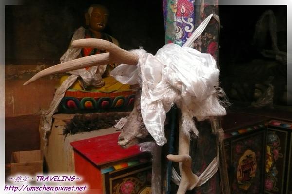 仲巴平安寺-護法殿-柱上的公羊頭角,後方塑像應是薩迦派.jpg