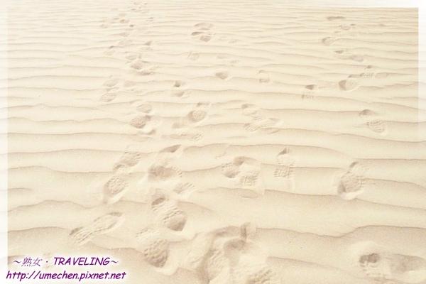 五彩沙漠-沙紋特寫-5.jpg