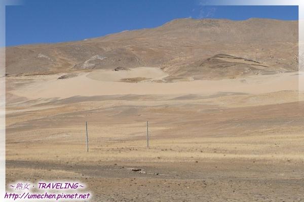 仲巴沙丘-很明顯的新月型沙丘.jpg