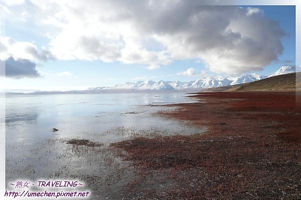 瑪旁雍錯-聖湖的晨間之美-3.jpg