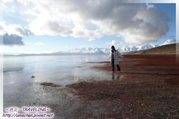 瑪旁雍錯-踩在結冰的湖面-2.jpg