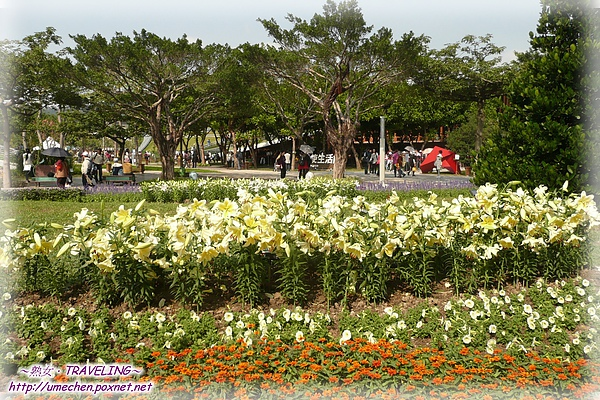 夢想館和天使生活館之間的大小花圃.jpg