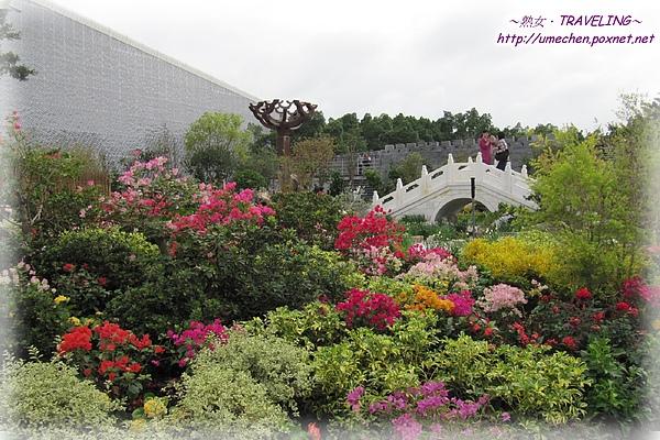 上海庭園.jpg