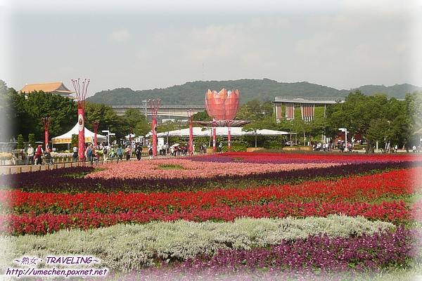 林下花圃花海-2.jpg
