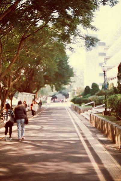 Photo32_30A.jpg