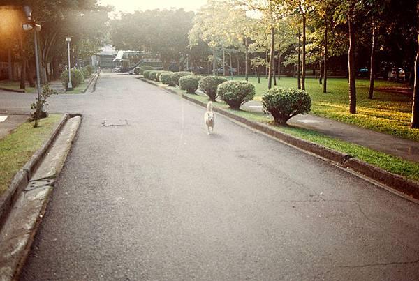 Photo19_17A.jpg