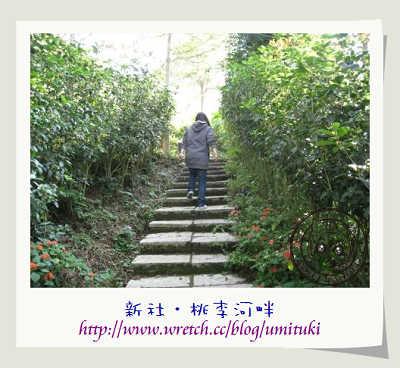 桃李河畔7.JPG