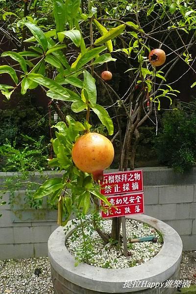 03臺南武廟 (5).jpg
