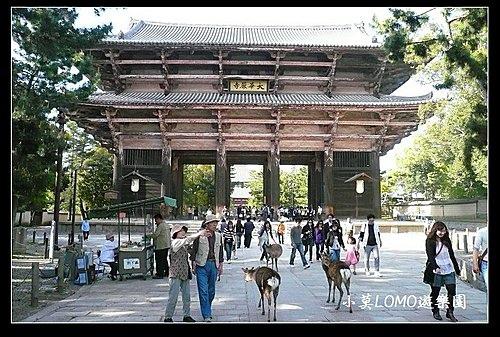 2009京都行(番外篇)_奈良的大佛 (2).jpg