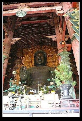 2009京都行(番外篇)_奈良的大佛  (7).jpg