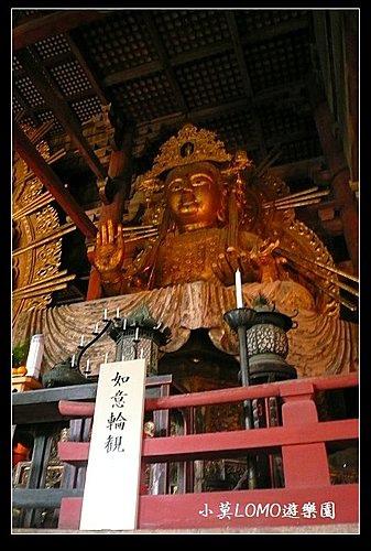 2009京都行(番外篇)_奈良的大佛  (10).jpg