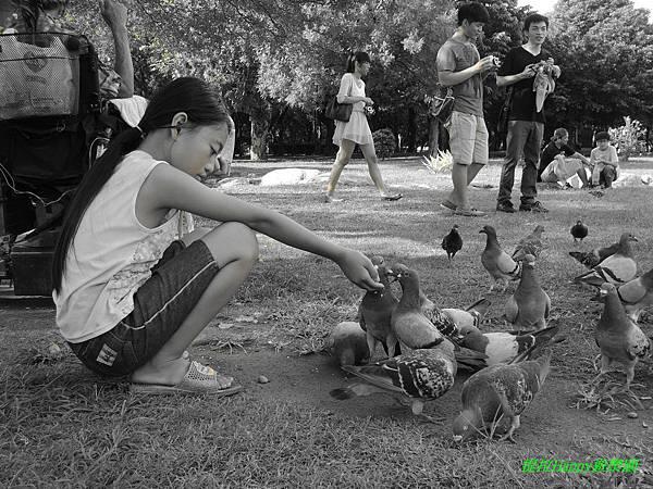 2013我在高雄_中央公園 (16).jpg
