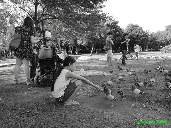 2013我在高雄_中央公園 (17).jpg