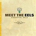 【Meet The Eels】