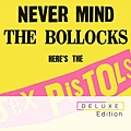 【Never Mind The Bollocks, Here's The Sex Pistols】
