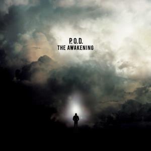 The Awakening / 狂野甦醒