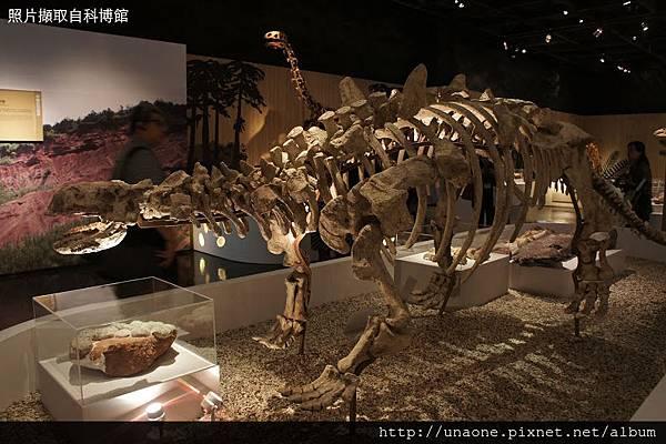 科博館恐龍展