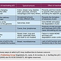 The many ways in which p53 may malfunction in human cancers.tif