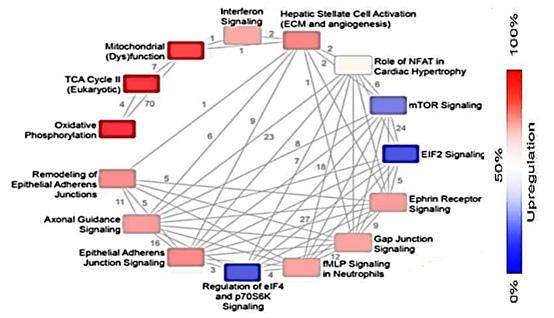第一階段-相關基因變化圖.jpg