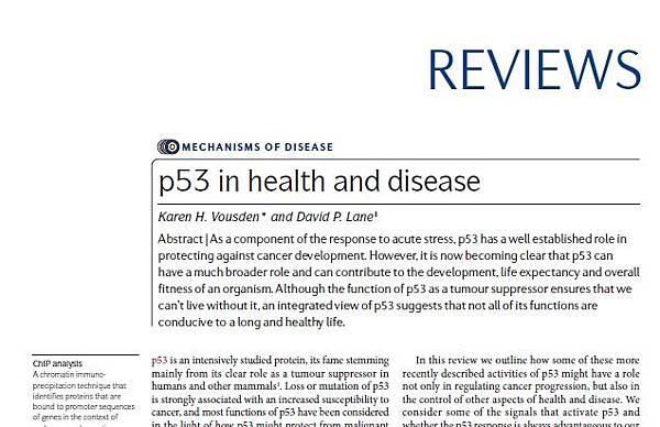 p53 in health and disease.jpg