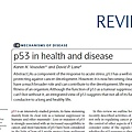 p53 in health and disease.jpg