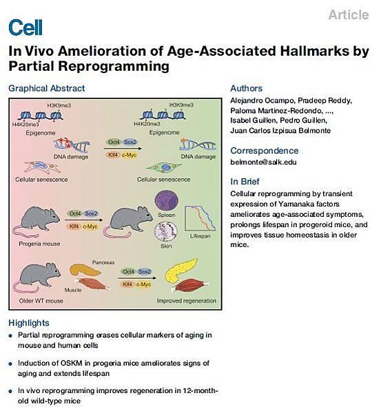 細胞-逆轉年齡paper.jpg
