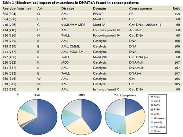 DNMT3A mutation site.tif