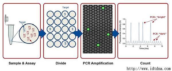 d3-4-cc-dpcr-fig1.jpg