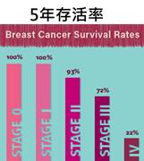 乳癌5年存活率.png