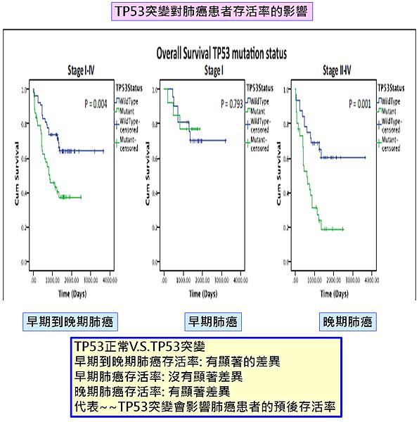 TP53突變-肺癌存活率.png