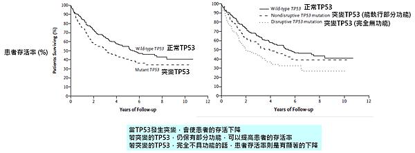 TP53-頭頸癌癒後.png