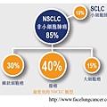 2. NSCLC.tif