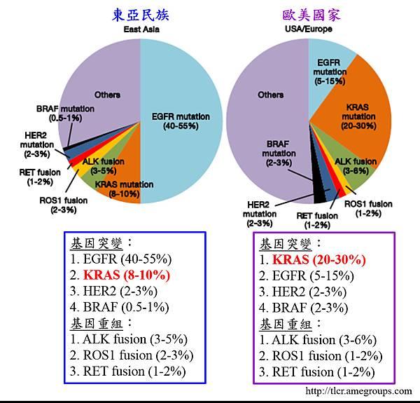3. NSCLC gene mutation.tif