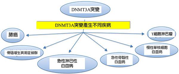 DNMT3A and other disease.tif